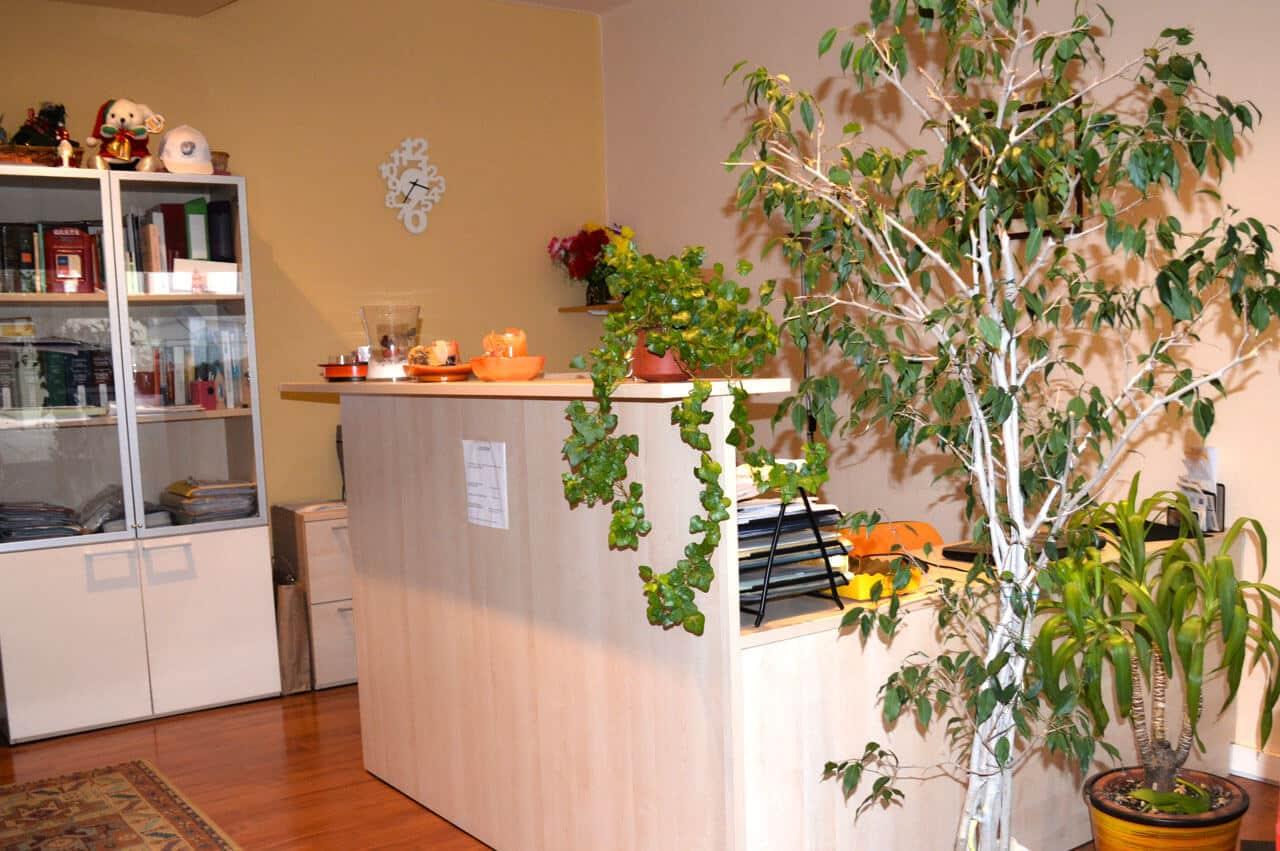 Studio Legale Piovene Rocchette Vicenza Avvicato Paola Caretta
